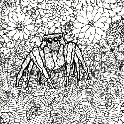 cropped spider drawing_sammjpg - Spider Coloring Book