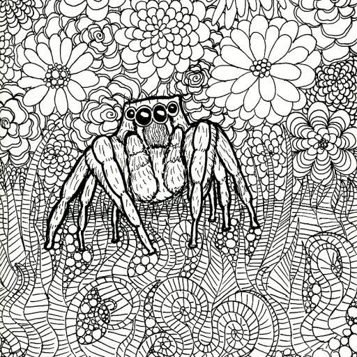 cropped-spider-drawing_samm.jpg